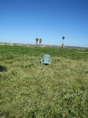 Alone in a Sea of Grass
