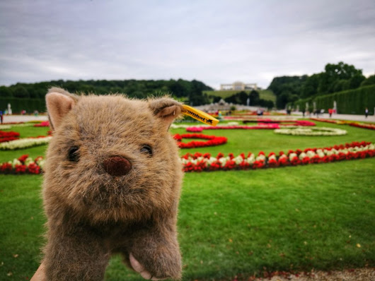 Where's Wagner: A Wombat's Tour of Vienna in 2 Days - Tales of a Backpacker