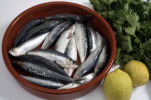 sardine-sardinha-alimento-importante-foco-em-vida-saudavel-herbalife