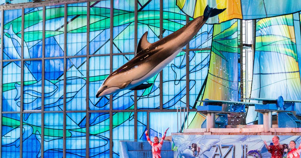 Sea Life Aquarium San Antonio Texas