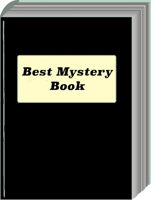 The Best Mystery Book - No Mistakes Publishing