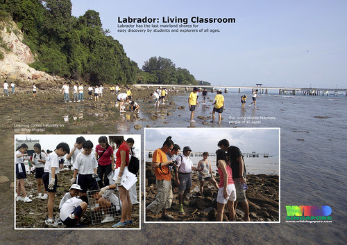 Labrador: A living classroom