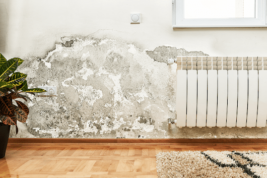 Mold Remediation | Removal | United Restoration Team