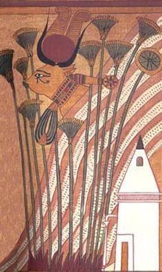 File:Hathor with sacred eye in papyrus.JPG