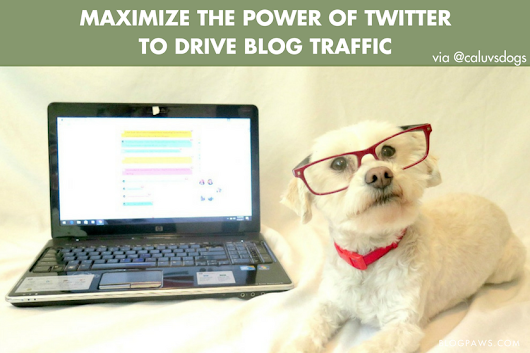 Maximize the Power of Twitter to Drive Traffic to Your Blog - BlogPaws