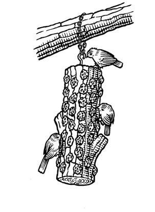 How to make a log bird feeder in 2020 | Bird feeders