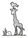Zürafa Boyama ücretsiz Boyama Resimleri