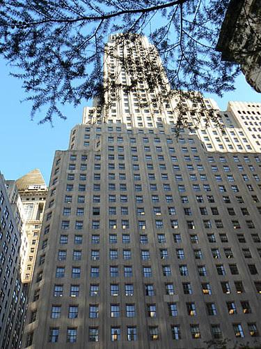 arbre et Building.jpg