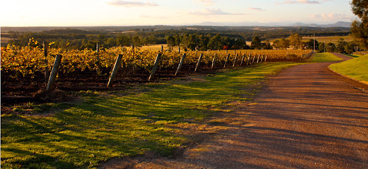 A Weekend in Hunter Valley - Traveler's Digest