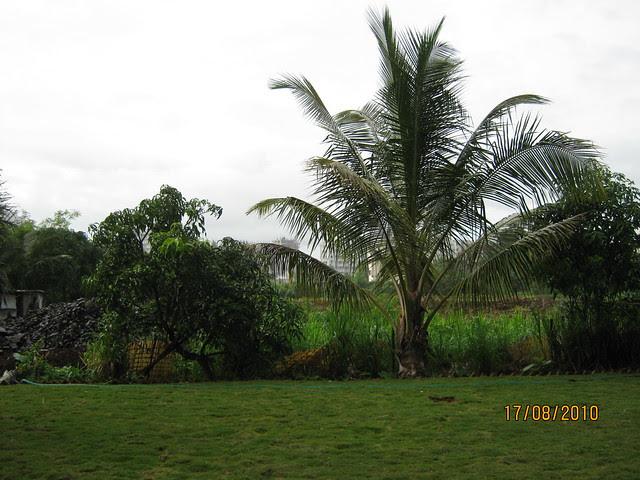 Latitude Wakad Pune - Site