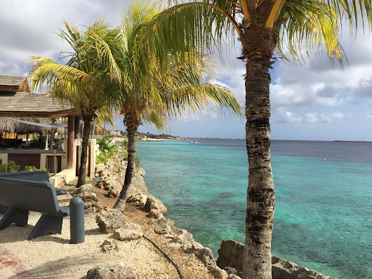 Best Beaches In Bonaire