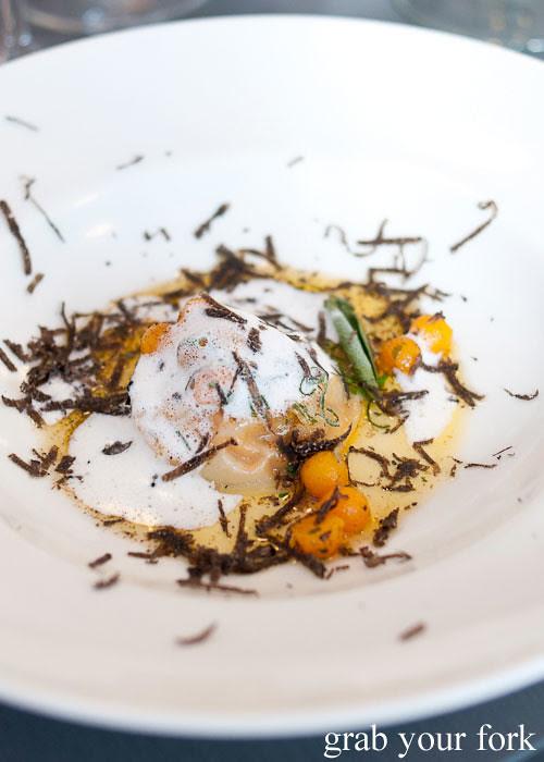 pumpkin ravioli with fresh truffle at dieci e mezzo canberra