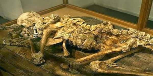 Τα Ερπετοειδή δεν είναι μύθος: Ανθρώπινος απολιθωμένος δράκος