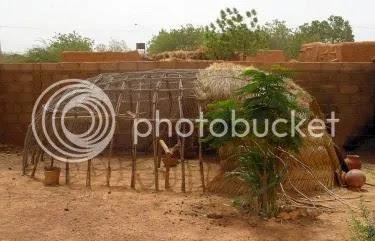 African chicken coop Unusual Chicken Coops