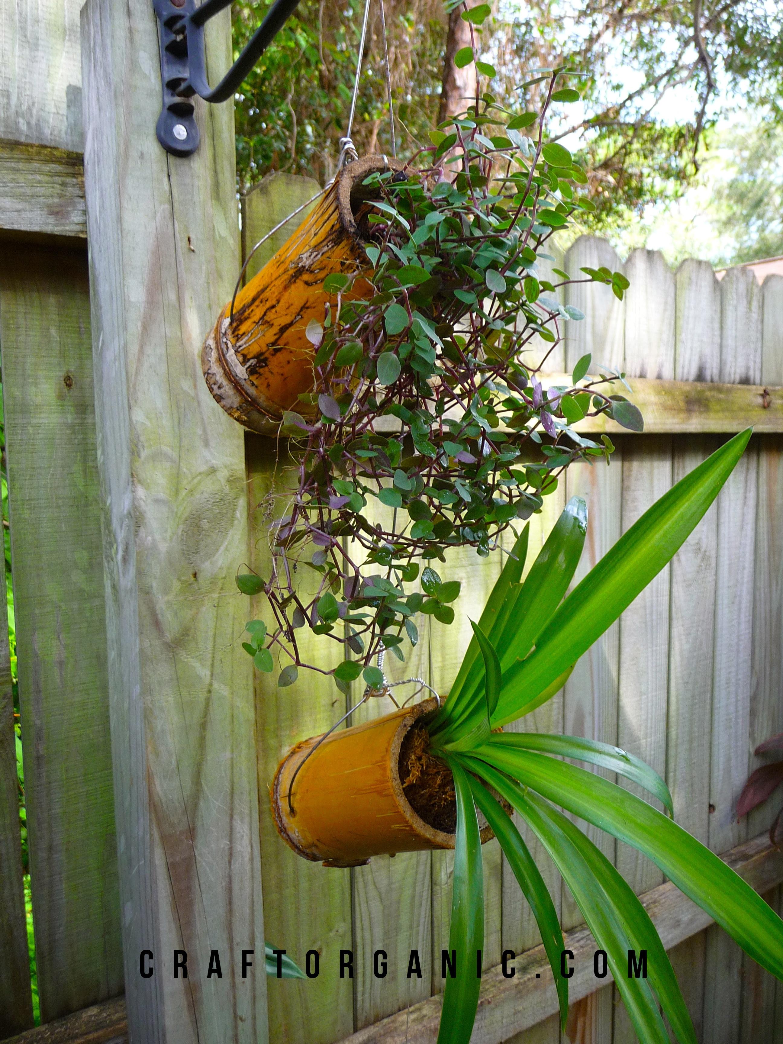 Easy Bamboo Planters - Craft Organic