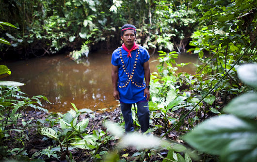In Ecuador, Indigenous Environmental Attitudes Affected by Proximity to Oil Extraction