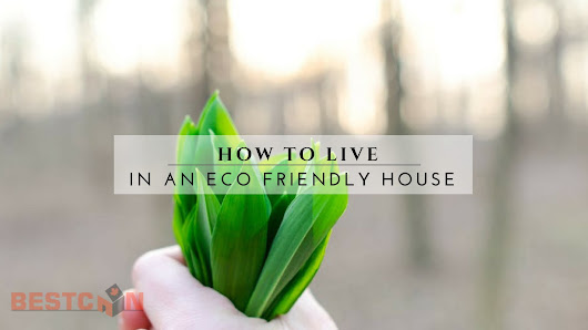 How To Live in an Eco Friendly House | BestCan | Ottawa Home Renos