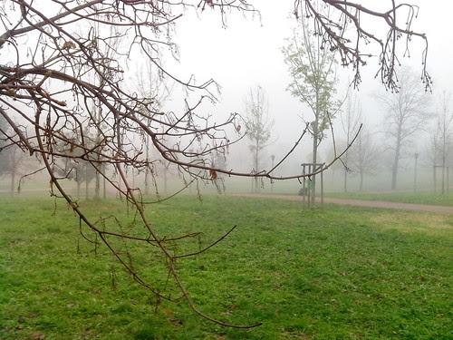 Nebbia densa nel Parco della Torre by Ylbert Durishti