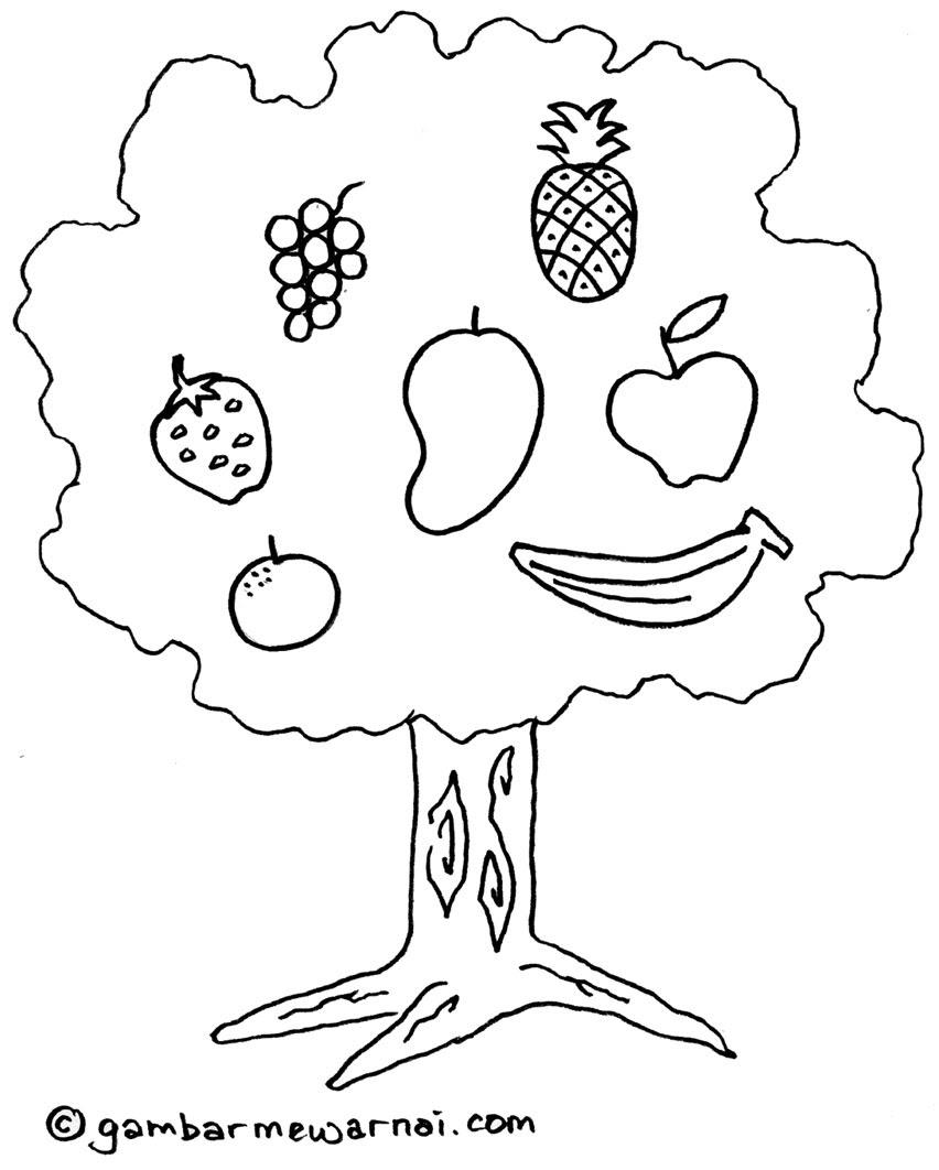 Mewarnai Gambar Pohon Buah buahan Gambar Mewarnai