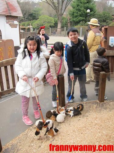 eveland korea 9