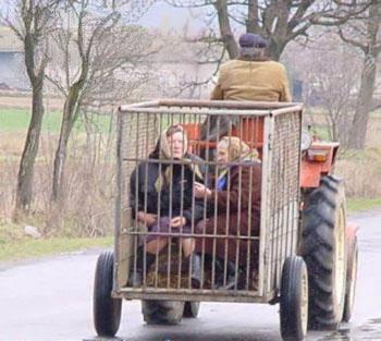 Transporte de sogras