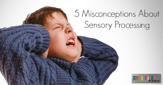 5 Misconceptions About Sensory Processing