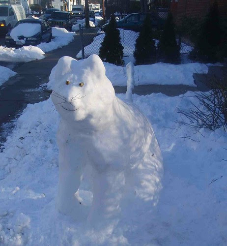 snow cat II