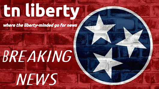 Shelby County Republican Party Seats Unqualified Leaders on the Steering Committee