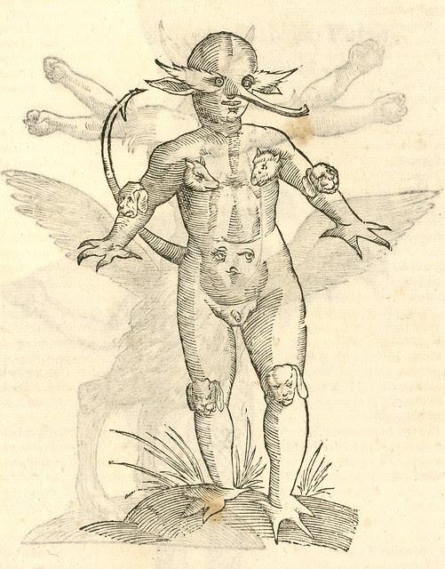 16th century woodcut of seamonster by Aldronvandi