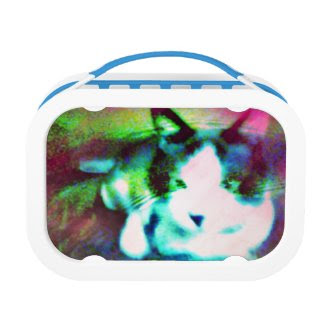 snowshoe mixed media kitty yubo lunch box