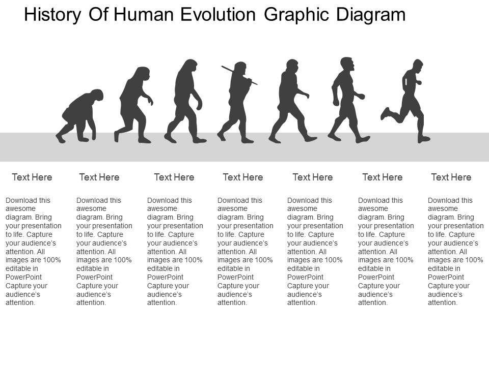 history_of_human_evolution_graphic_diagram_flat_powerpoint_design_Slide01