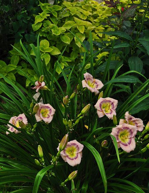 Eure Garden