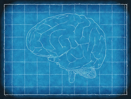 Debunking the Myth That OCD is Associated With Superior Intelligence