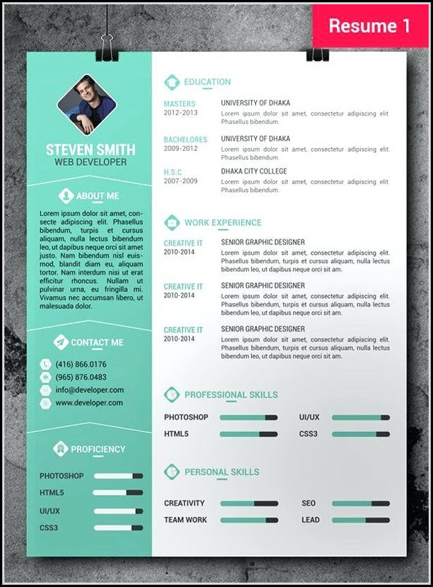 Creative Cv Maker Online Free Best Resume Examples
