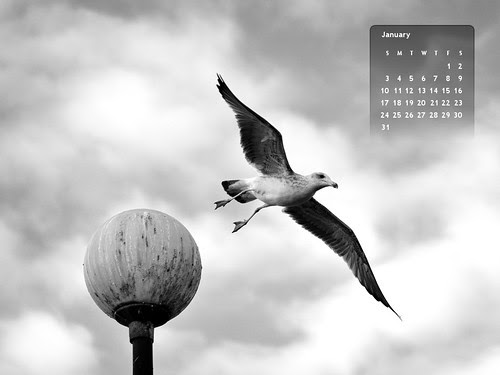 January 2010 Desktop Calendar [click to get the full size version]