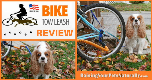 Dog Product Reviews For Active Dogs: Bike Tow Leash Review ~ Raising Your Pets Naturally with Tonya Wilhelm