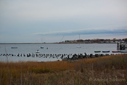 Low Tide at New Haven Harbor at City Point-1.jpg