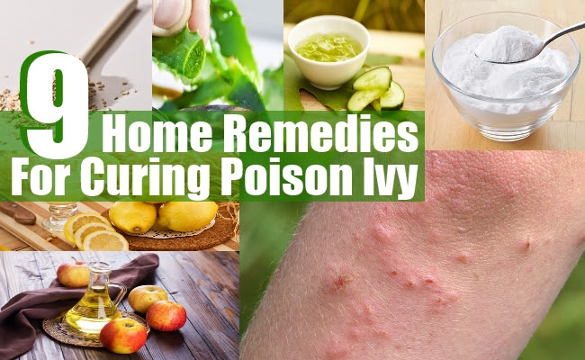9 Top Home Remedies For Curing Poison Ivy | Find Home ...