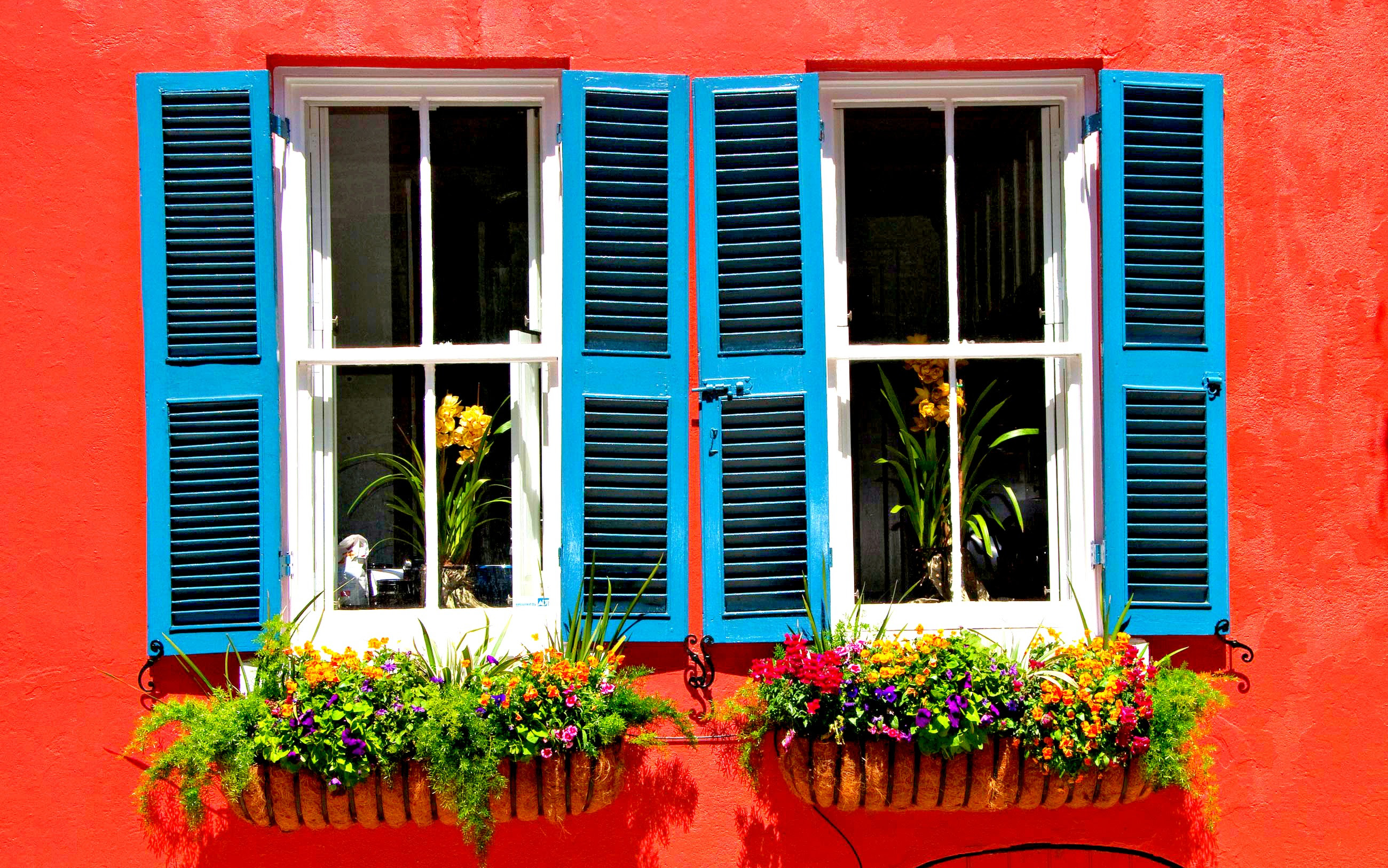 Smart window choices for your home1