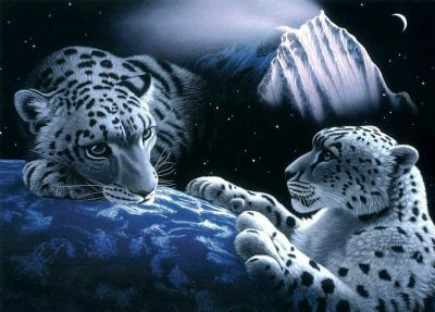 tigres2.jpg