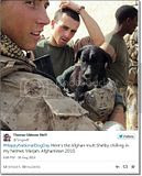 photo Militarycelebratesnationaldogday-1_zps5f3862ea.jpg