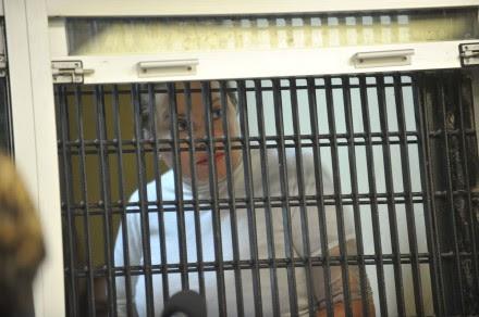 Gordillo comparece ante juez en el reclusorio Oriente. Foto: Especial