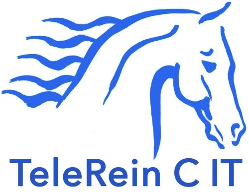 TeleRein C IT | The only equestrian tool to improve your rein contact