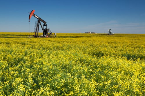 Crop insurance premiums surge in Saskatchewan