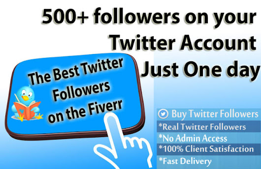 I will do 500 plus Followers on your Twitter Account just One Day