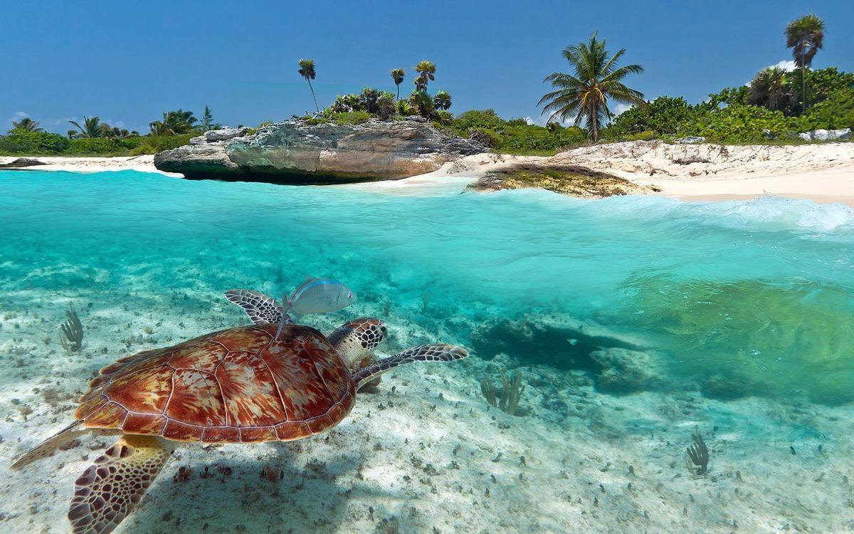 Playa del Carmen, mejor destino turístico en México