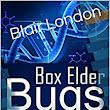 Amazon.com: Box Elder Bugs eBook: Blair London: Kindle Store