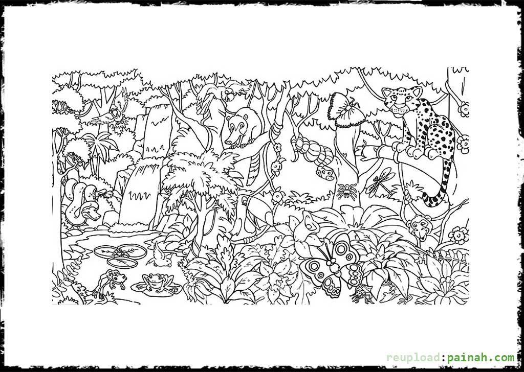 Tropical Rainforest Coloring Pages Color Jungle Coloring Book ... | 728x1024