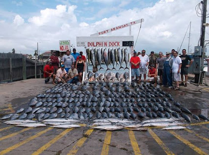 Dolphin dock inc google for Deep sea fishing houston
