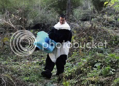 Pandamen Taking Care of Baby Pandas